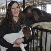 Ferme Syldia | Faire connaitre la chèvre de boucherie